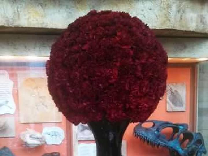 Tmx Fun Design 3 51 712219 160540428854099 Grand Rapids, MI wedding florist
