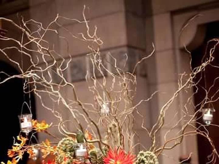 Tmx Meredith 11 51 712219 160540417560692 Grand Rapids, MI wedding florist
