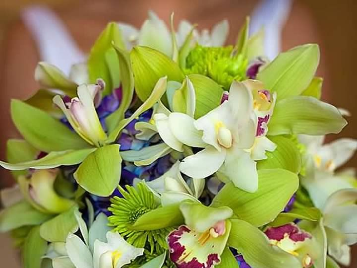 Tmx Summer Wedding 5 51 712219 160540476318065 Grand Rapids, MI wedding florist