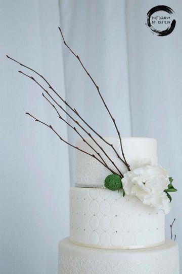 Aesthetic cake