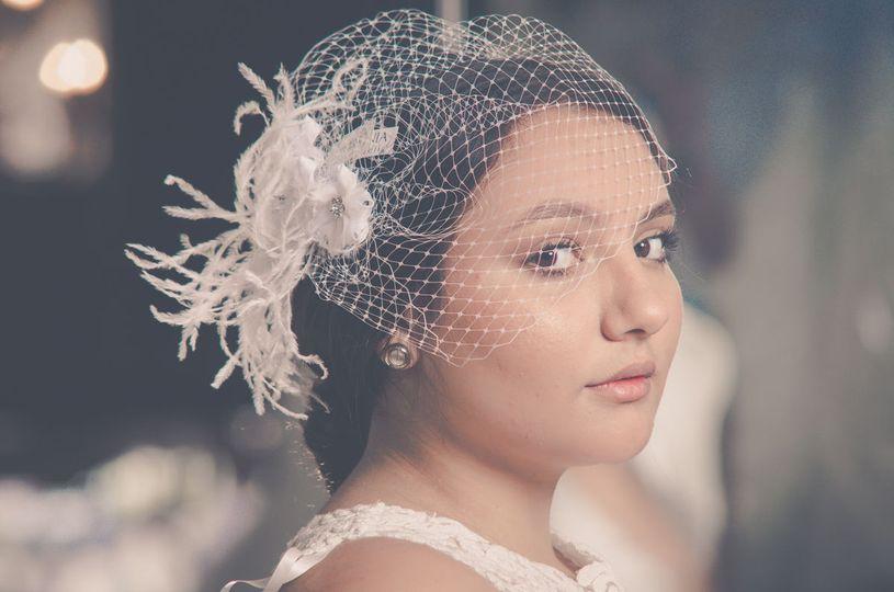 Netted veil