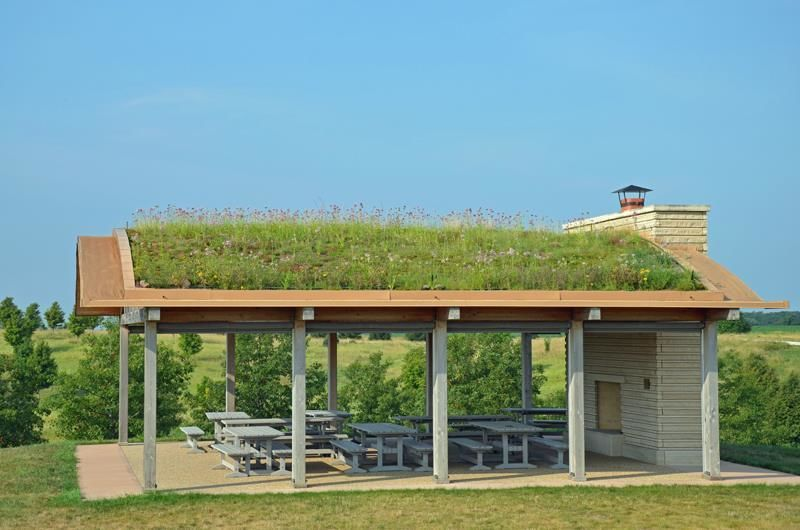 Living roof Pavilion