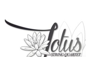 Lotus String Quartet