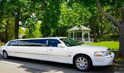 Michael's Limousine Co., Inc. 1