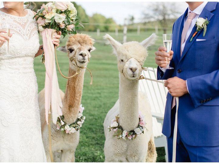 Tmx Jamye 5 51 680519 160995669057262 Tunkhannock, PA wedding planner