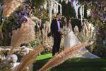 Tweed Weddings image