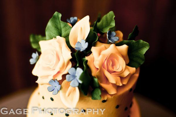 Tmx 1315850322363 20110618101329 Joplin wedding cake