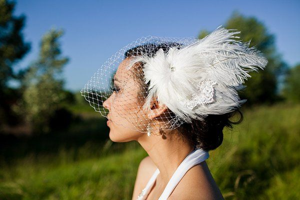 Birdcage Veil and Bridal Fascinator by Ellen Marie