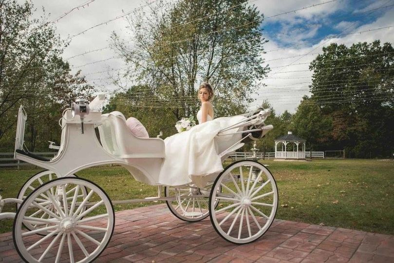 The bride and the carriage