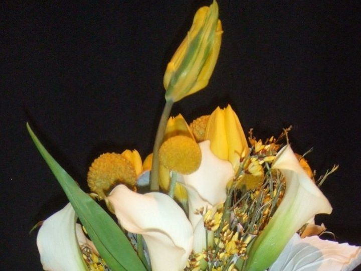 Tmx 1363975073092 15 Gulfport wedding florist