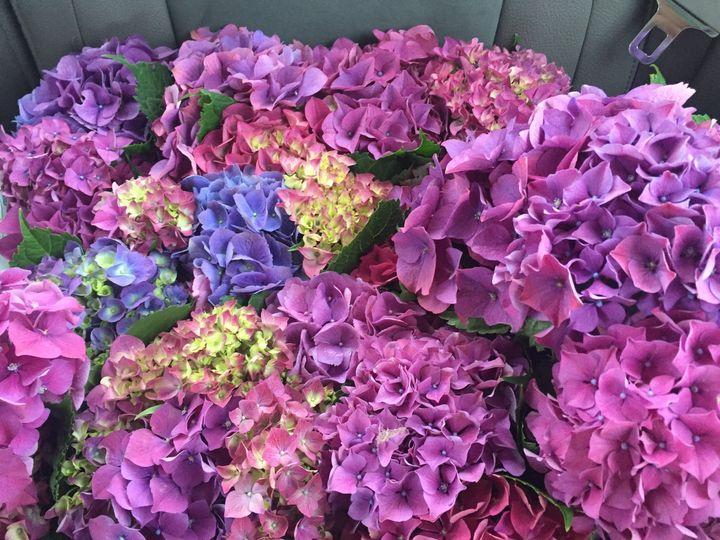 Tmx 1498981585361 Img7454 Amity wedding florist