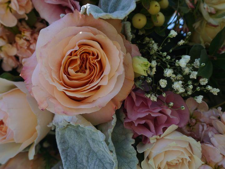 Tmx 1498982233386 C2e3a5b5 B62a 449c A73d 5bdc5f51b43a Amity wedding florist