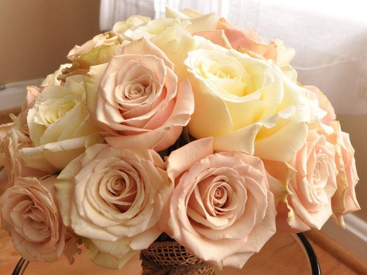 Tmx 1378260223128 Dsc0049 Frederick, MD wedding florist