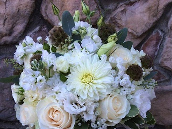 Tmx 1414940214904 Carrie Frederick, MD wedding florist