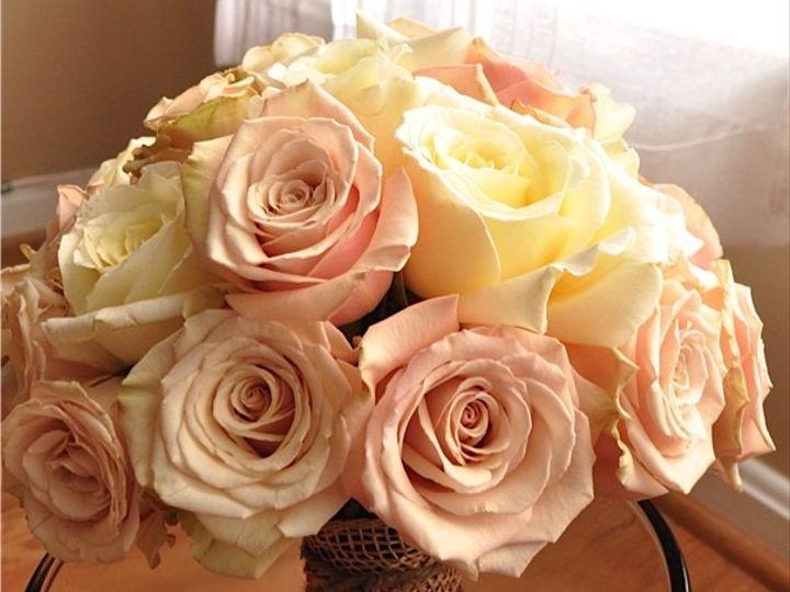 Tmx 1414940406760 Ashley Valentine Frederick, MD wedding florist