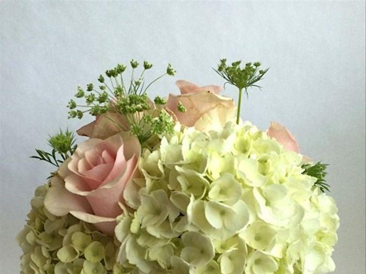 Tmx 1414964560774 Lindsay Ruggiero Centerpiece Frederick, MD wedding florist