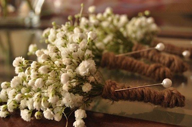 Tmx 1414967156276 Babys Breath Frederick, MD wedding florist