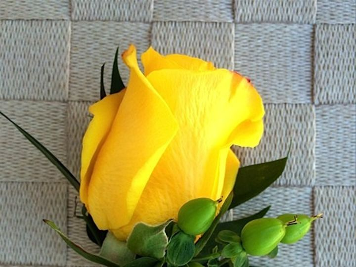 Tmx 1414967214267 Yellow Rose With Green Hypericum Frederick, MD wedding florist