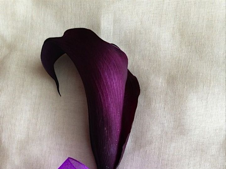 Tmx 1414967309010 Calla Lily Bout Frederick, MD wedding florist