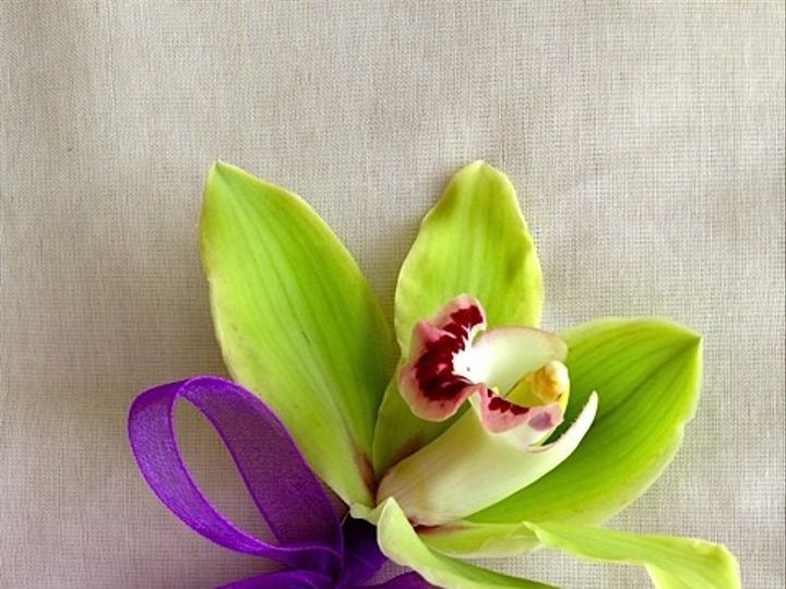 Tmx 1414967323071 Green Orchid Bout Frederick, MD wedding florist