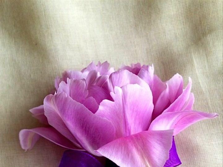 Tmx 1414967331991 Tulip Bout Frederick, MD wedding florist