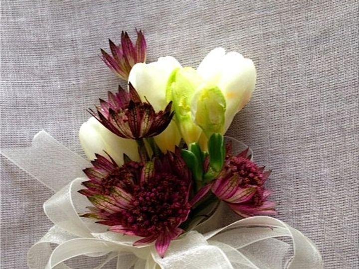 Tmx 1414967397118 Freesias Frederick, MD wedding florist