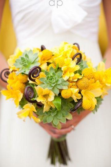 poplar flower shop flowers terre haute in weddingwire. Black Bedroom Furniture Sets. Home Design Ideas