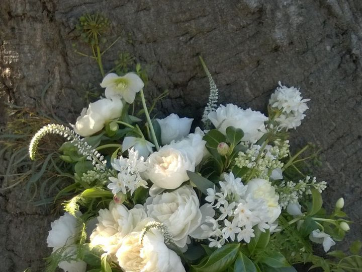 Tmx 1424898826428 White And Green Hand Picked Bouquet Woodinville wedding florist
