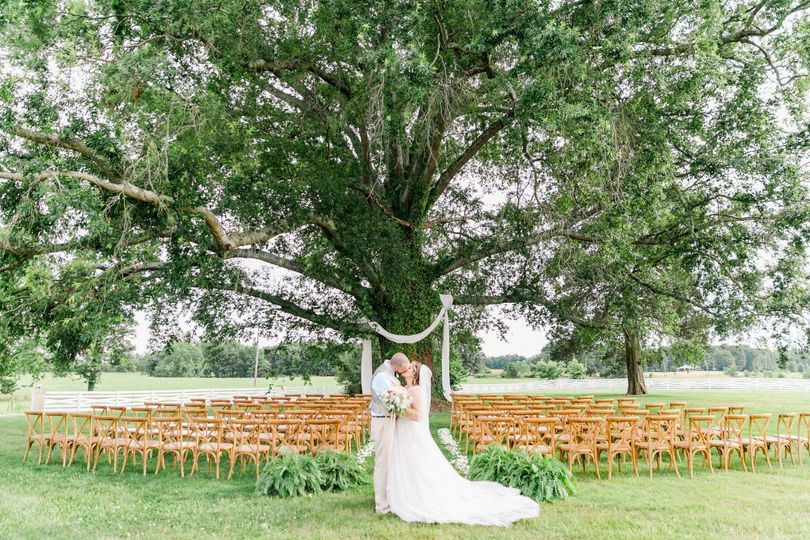 Couple by the weeping oak