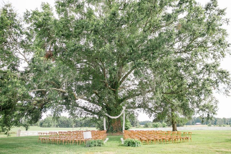 Weeping oak ceremony