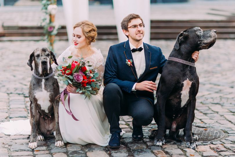 attractive wedding couple sitting on their haunche