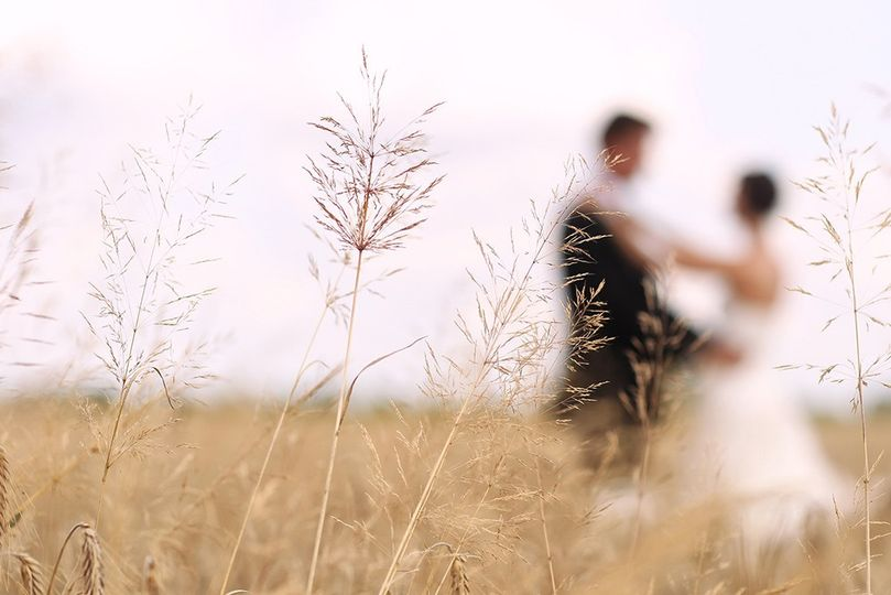 Newlyweds in the field
