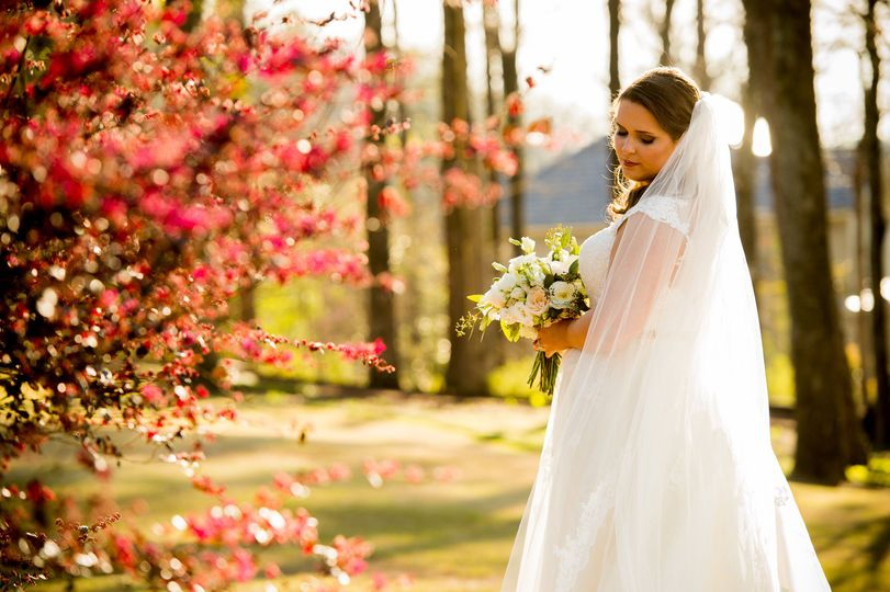 Bridal Photo Session  Photo By Jerrod Brown Photography