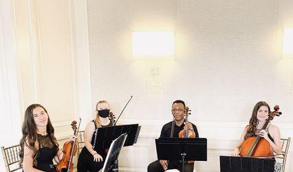 Violin Vita