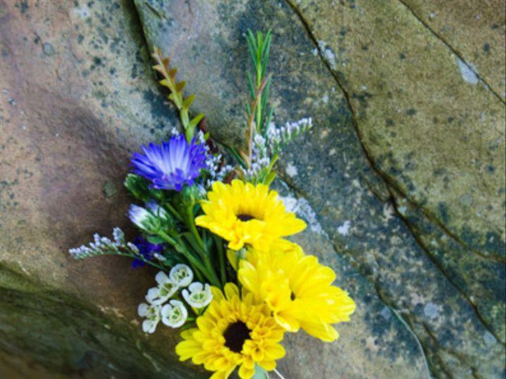 Tmx 1451679236508 Img8888 Boston wedding florist
