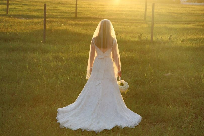 Elegant field sunlit bride