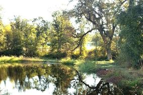 Laken Oaks