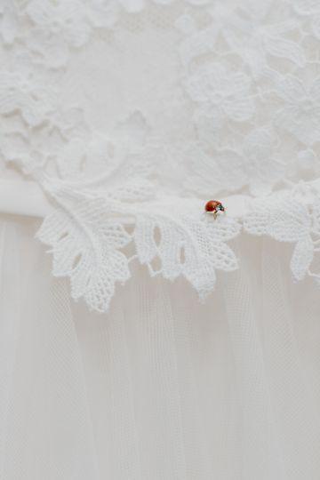 Lady Bug on brides dress.