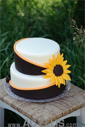 Sunflower cake - picture by AC Ellis