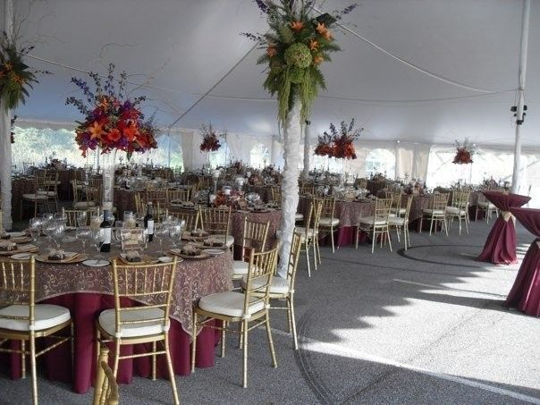 Tmx 1520950252816 793313913140949565839949524554785145071n Fort Wayne, IN wedding rental