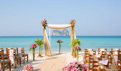 Totally Tropical Weddings
