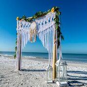 Tmx P5 51 1044229 Saint Petersburg, FL wedding planner