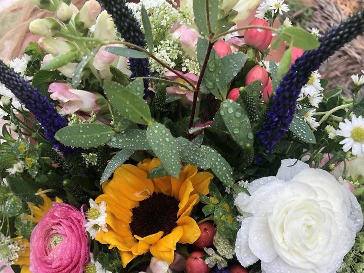 Tmx Wedding33 51 1044229 159352940313204 Saint Petersburg, FL wedding planner