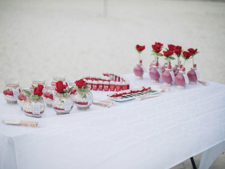 Tmx Wedding84 51 1044229 160210025792766 Saint Petersburg, FL wedding planner