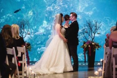 Tmx 1516825991 54e465cfd7bb3c44 1516825990 6cbeb5d5c3017d4b 1516823125891 3 Thumbnail 316 Seattle, WA wedding officiant