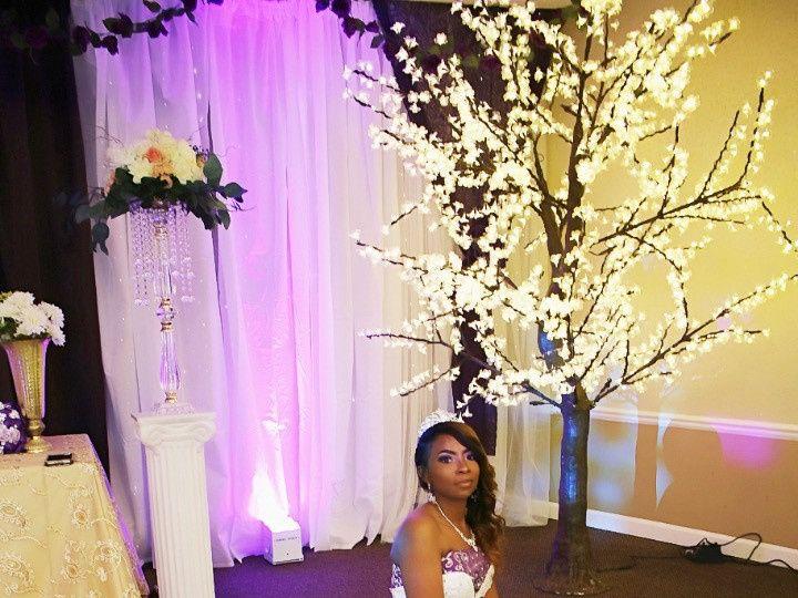Tmx Img 3792 51 1942329 158153532561879 Livonia, MI wedding planner