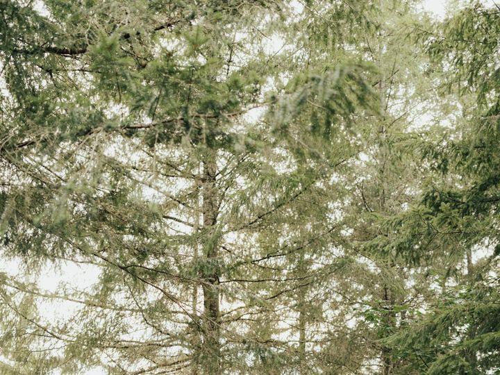 Tmx Seattleweddingphotographer Rachelsyrisko Mtrainierelopement Feleciabrandon Forestwedding 196 51 1022429 160287575628353 Seattle, WA wedding photography