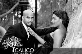 Calico Photography