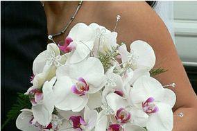 Tip Top Floral