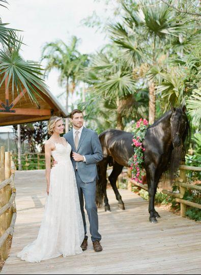 Newlyweds and horse
